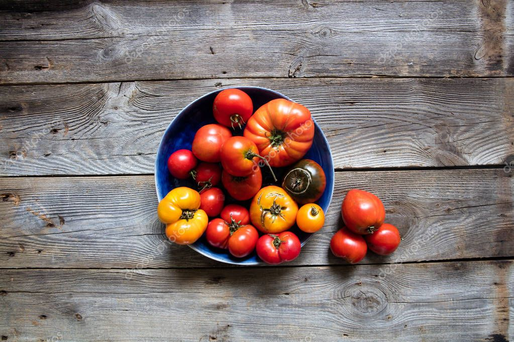 organic mediterranean cuisine and healthy gardening, still-life, above view