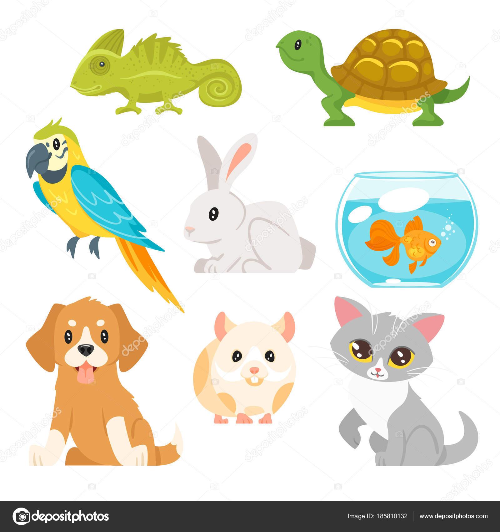 Fotos animales vectorizados descargar conjunto de casa mascotas animales vector de stock - La casa de la mascota ...