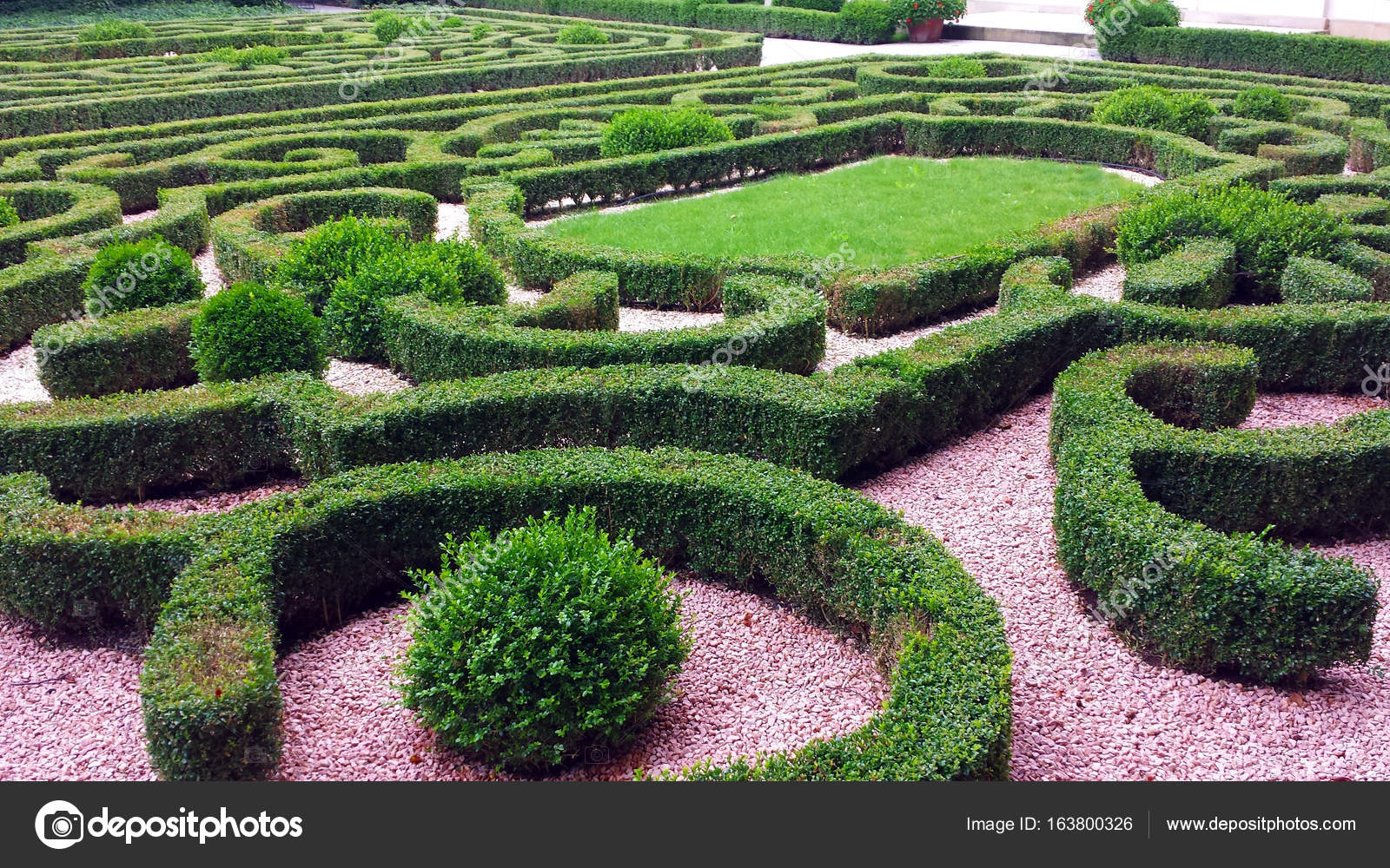 Ornamental hedges in the park — Stock Photo © Ada #163800326 on
