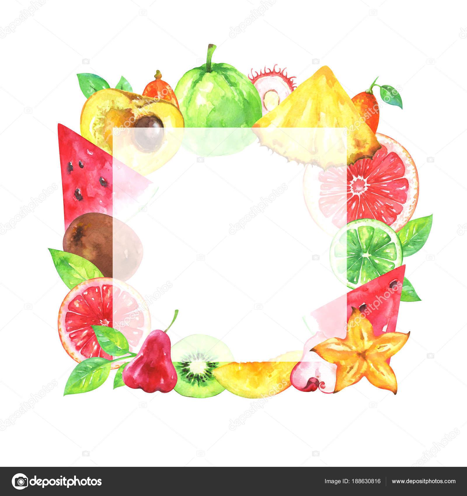 Handgemalte Quadratische Frucht Rahmen Aquarell Ananas Karambolen ...