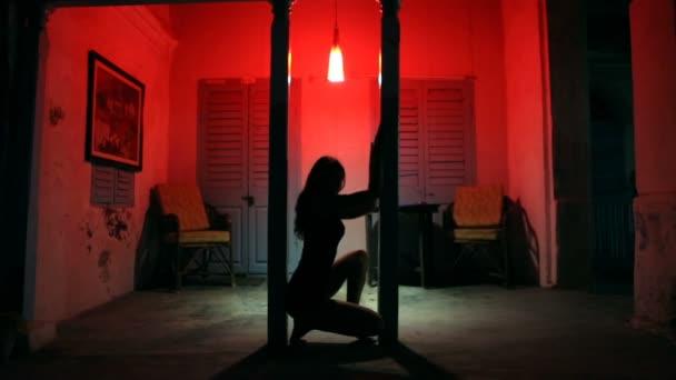 Sexy Frau Silhouette Tanzen im Hotel. Pole Dancer weibliche Stripperin im Nachtbordell. Sinnliches Rotlicht, Noir-Stil.