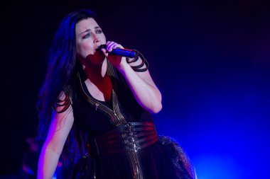 Evanescence - Amy Lee