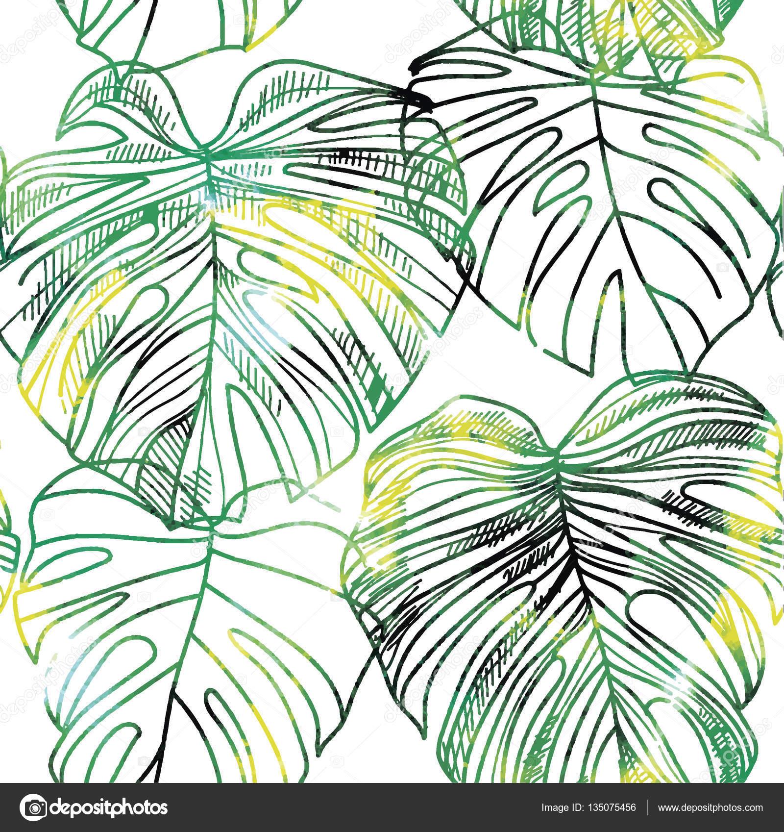 Plant Leaf Background Drawing