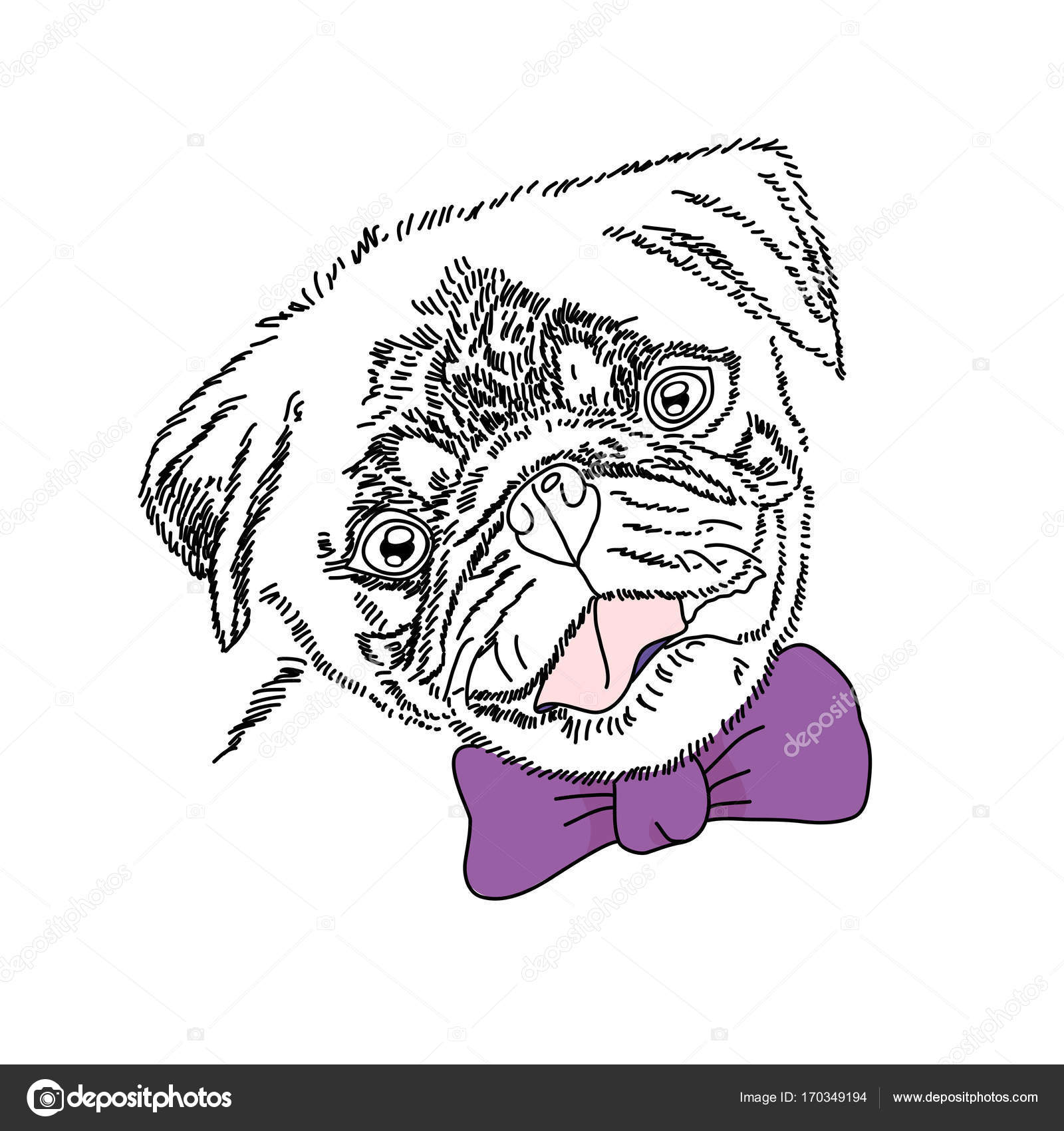 Popular Pug Bow Adorable Dog - depositphotos_170349194-stock-illustration-dog-with-violet-bow-cute  Perfect Image Reference_51856  .jpg