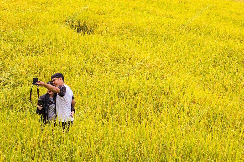 couple takes selfie in the golden rice field of northern Thailan