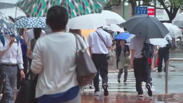 Fukuoka, Japan - 13 July 2019 - Slow motion of pedestrians walk across street holding their umbrella on a rainy day in Fukuoka, Japan