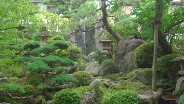Krásná japonská zahrada s zdobenými stromy a koi rybník