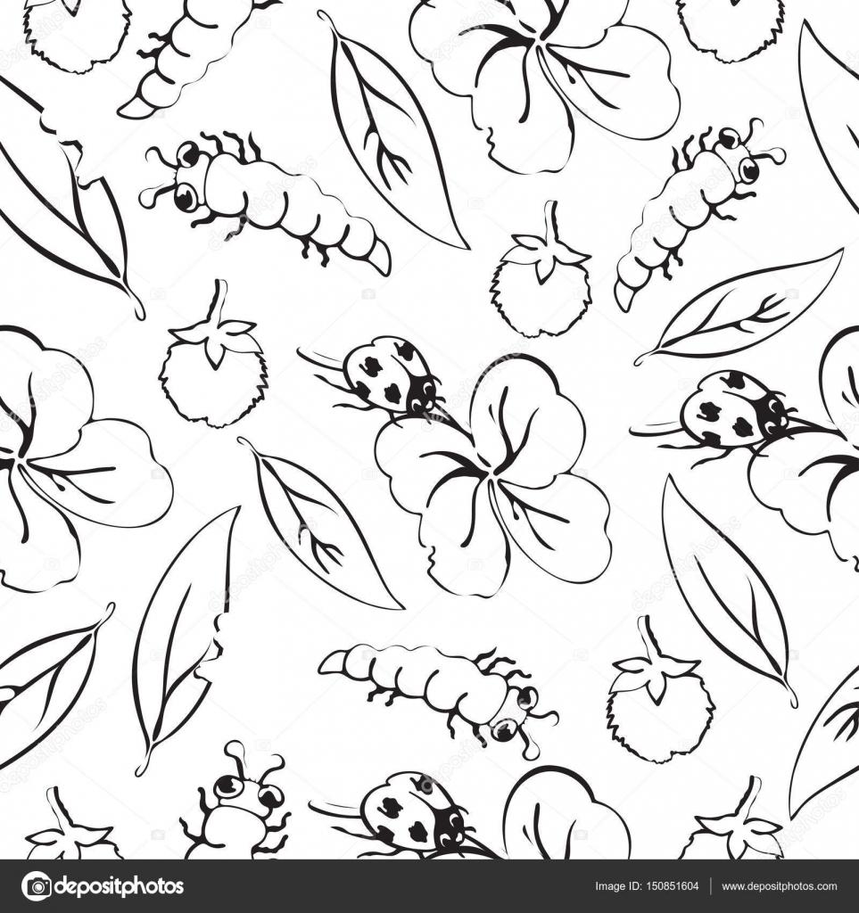Dibujo de Mariquita escarabajo y orugas, hojas y flores de patrones ...