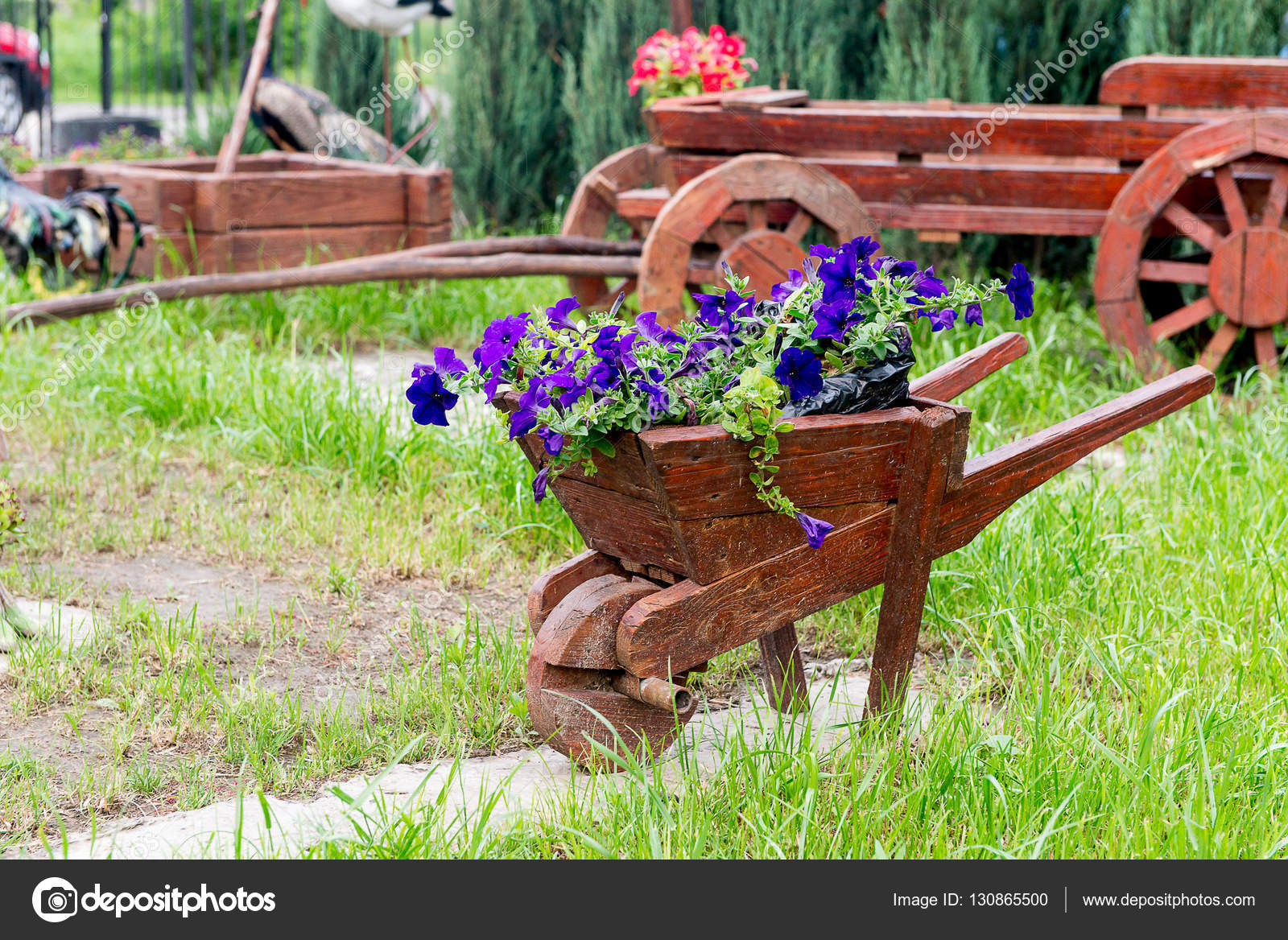 Wooden decorative flower bed truck serves for flowering petunia ...