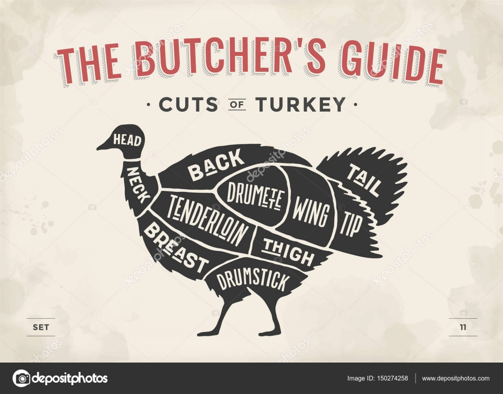 Cuts Of Turkey Diagram - ( Simple Electronic Circuits ) •