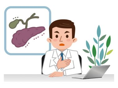 Doctor explaining the pancreas and gall bladder