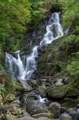 Ein Wasserfall in den Bäumen