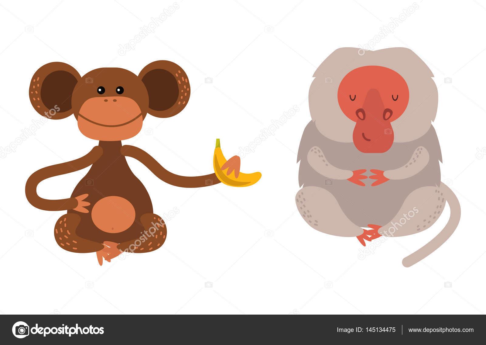 Dibujos Changos Bebes Diferentes Tipos De Vectores Animales Raros
