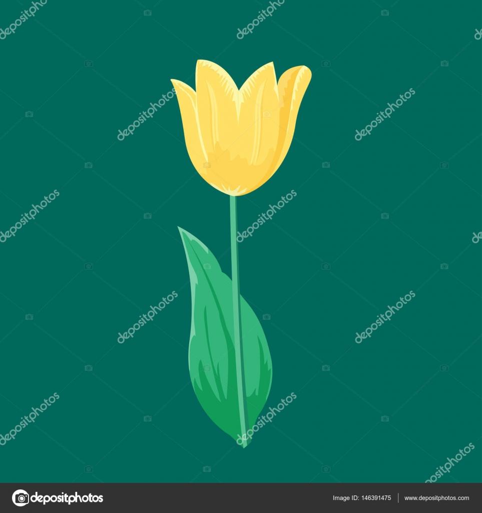 Vintage żółty Tulipan Kwiat Może Służyć Jako Karta Zaproszenie Z