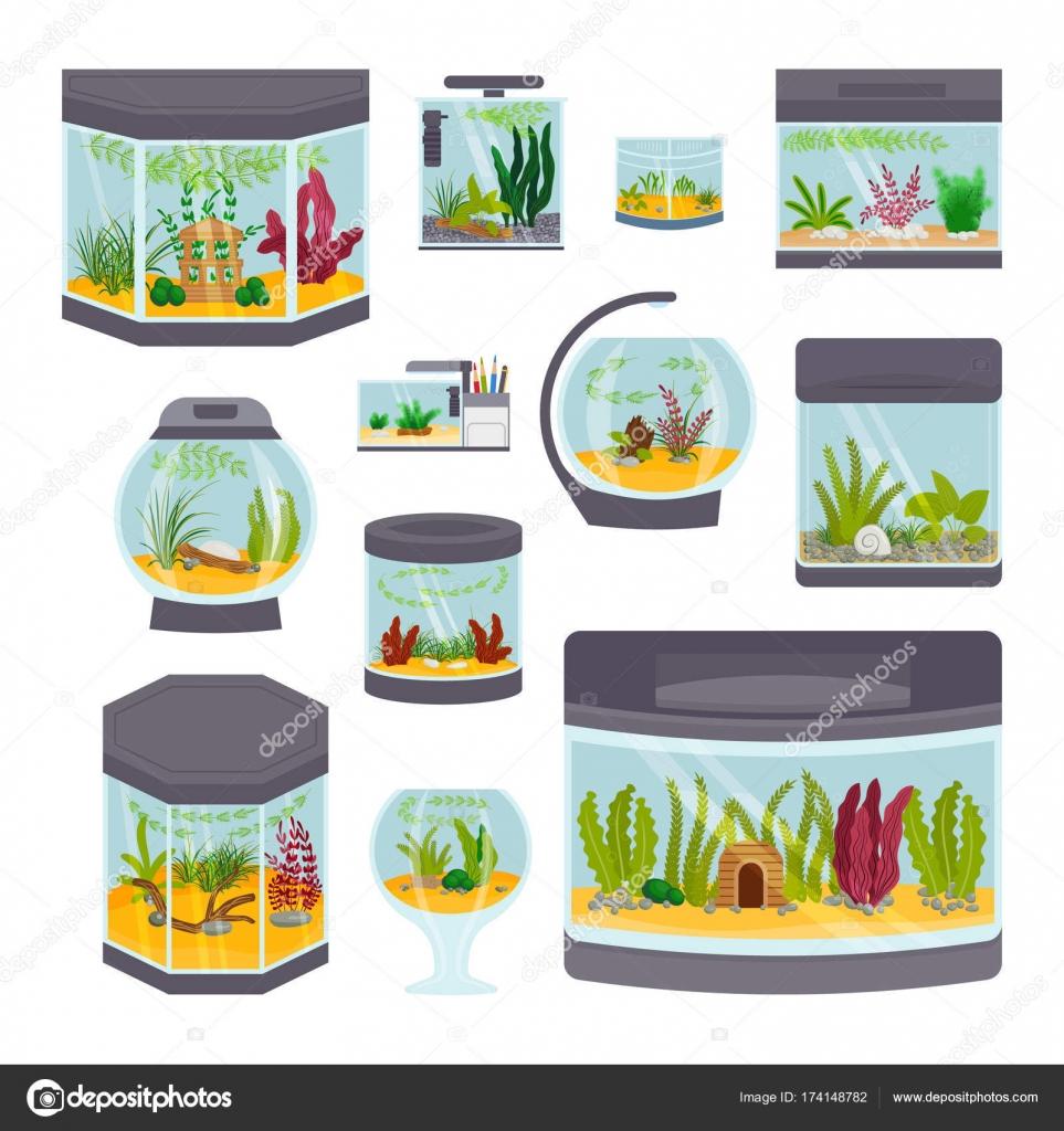 Wunderbar Transparente Aquarium Innen Vektor Illustration Isoliert Auf Weißem  Lebensraum Haus Unter Wasser Tank Goldfischglas U2014