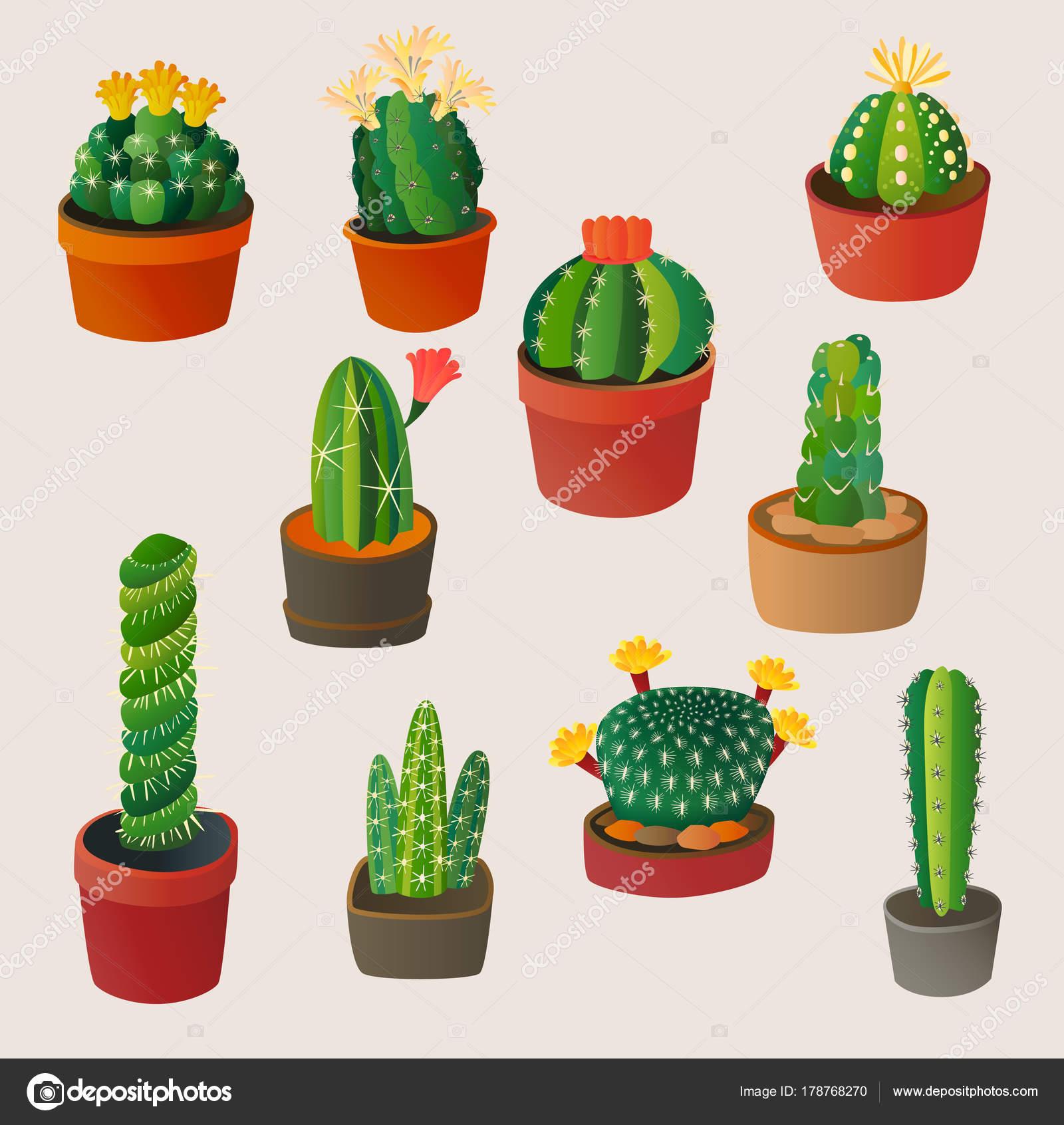 Dessin Animé Mignon Cactus Plante Maison Nature Vector