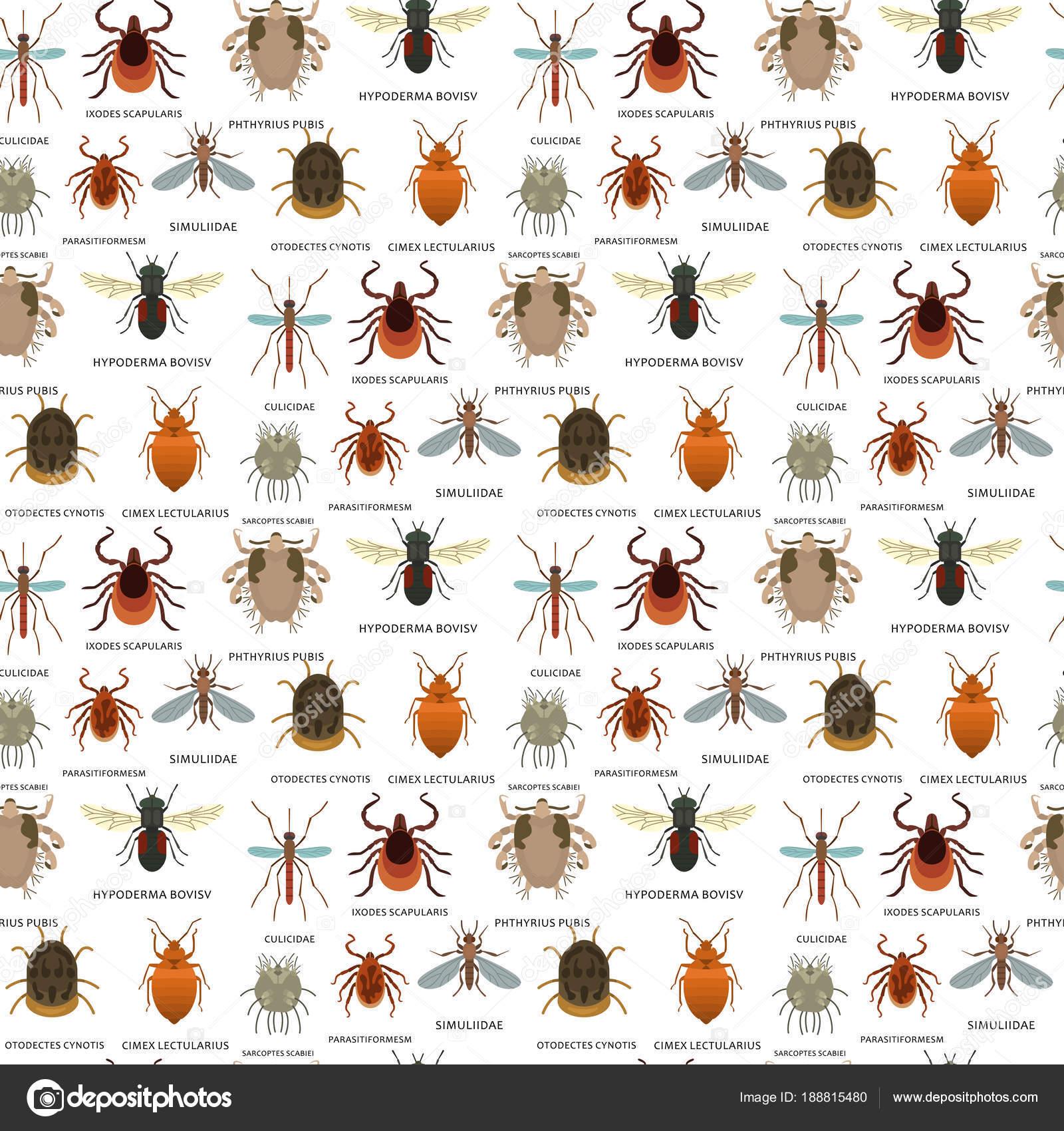 állati paraziták az ökoszisztémákban