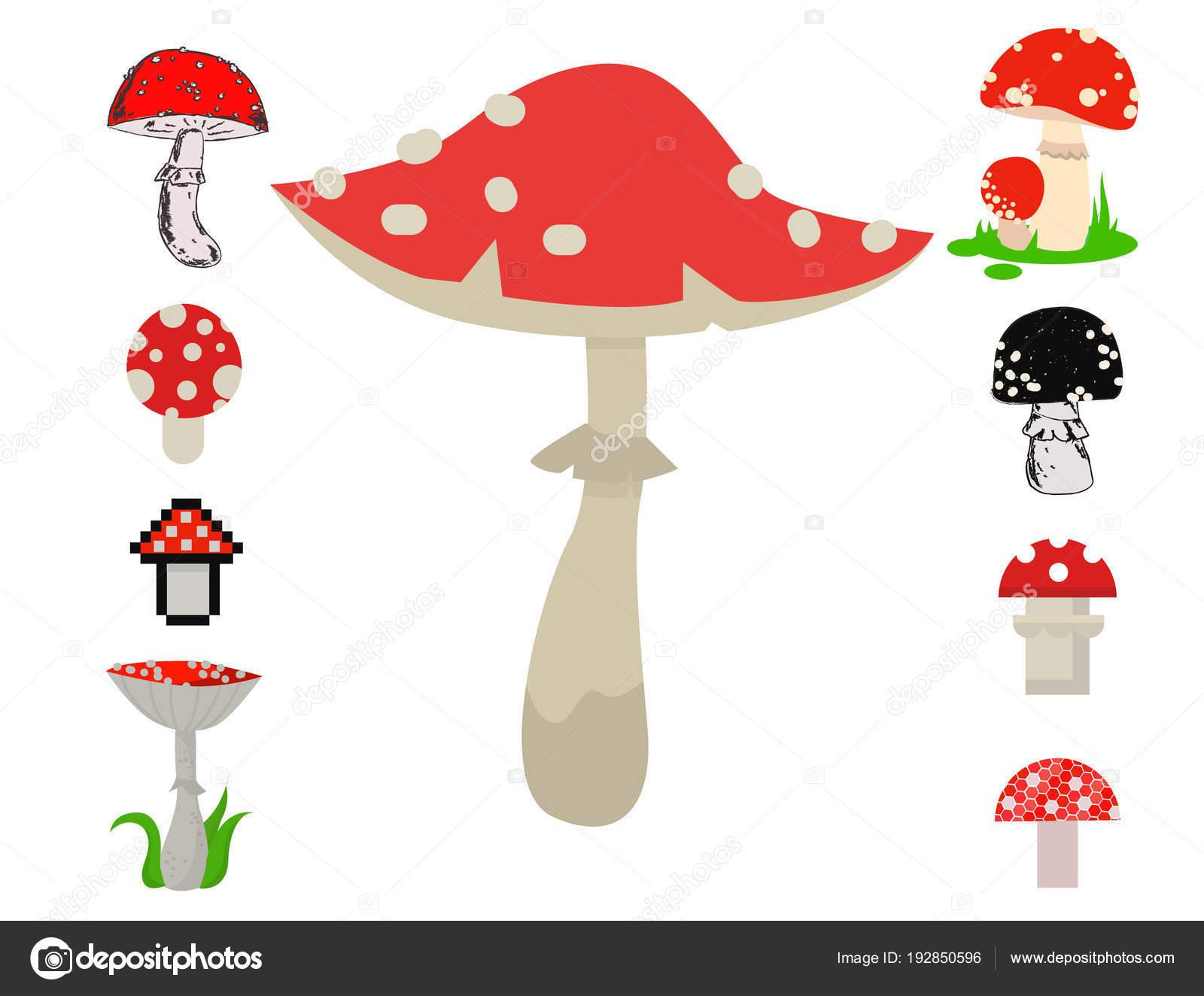 Ilustración De Alimentos De Vectores Amanita Setas Peligrosas Set