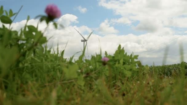 Větrné mlýny Zelená energie