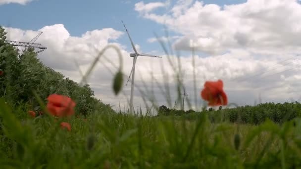 mulino a vento per la produzione di energia elettrica