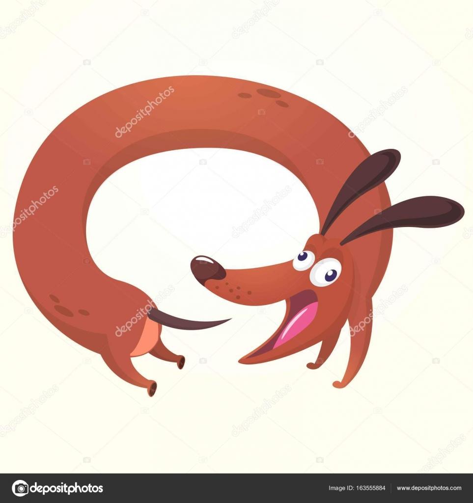 Cartoon ilustración de Vector de lindo Dachshund raza pura. Para su ...