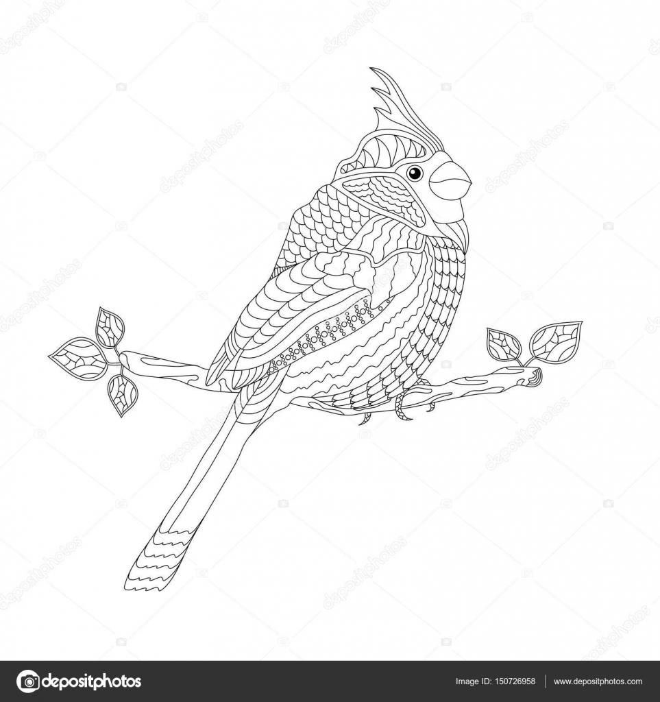 Yetişkinler Ve çocuklar Için Boyama Kitabı Fantezi Kuş Dal Siyah