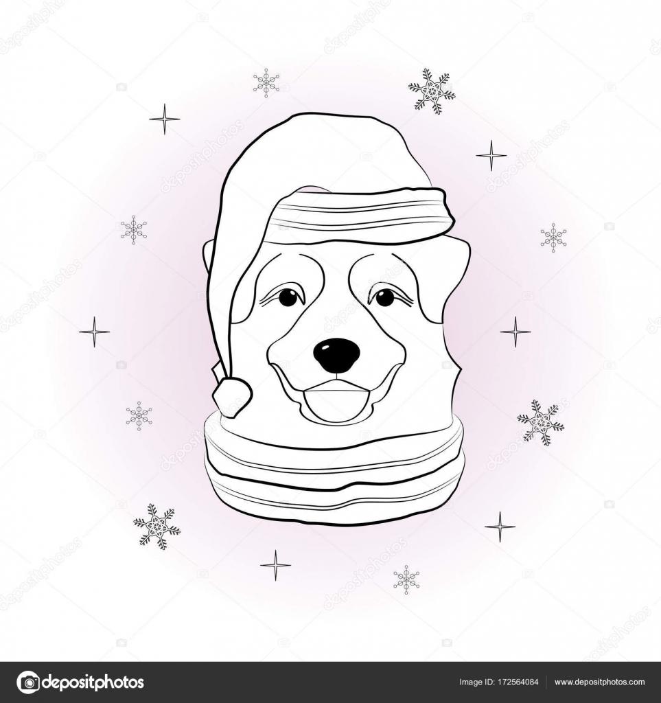 Köpek Kış şapka Ve Atkı Kar Taneleri Arka Plan üzerinde Başkanı Kış