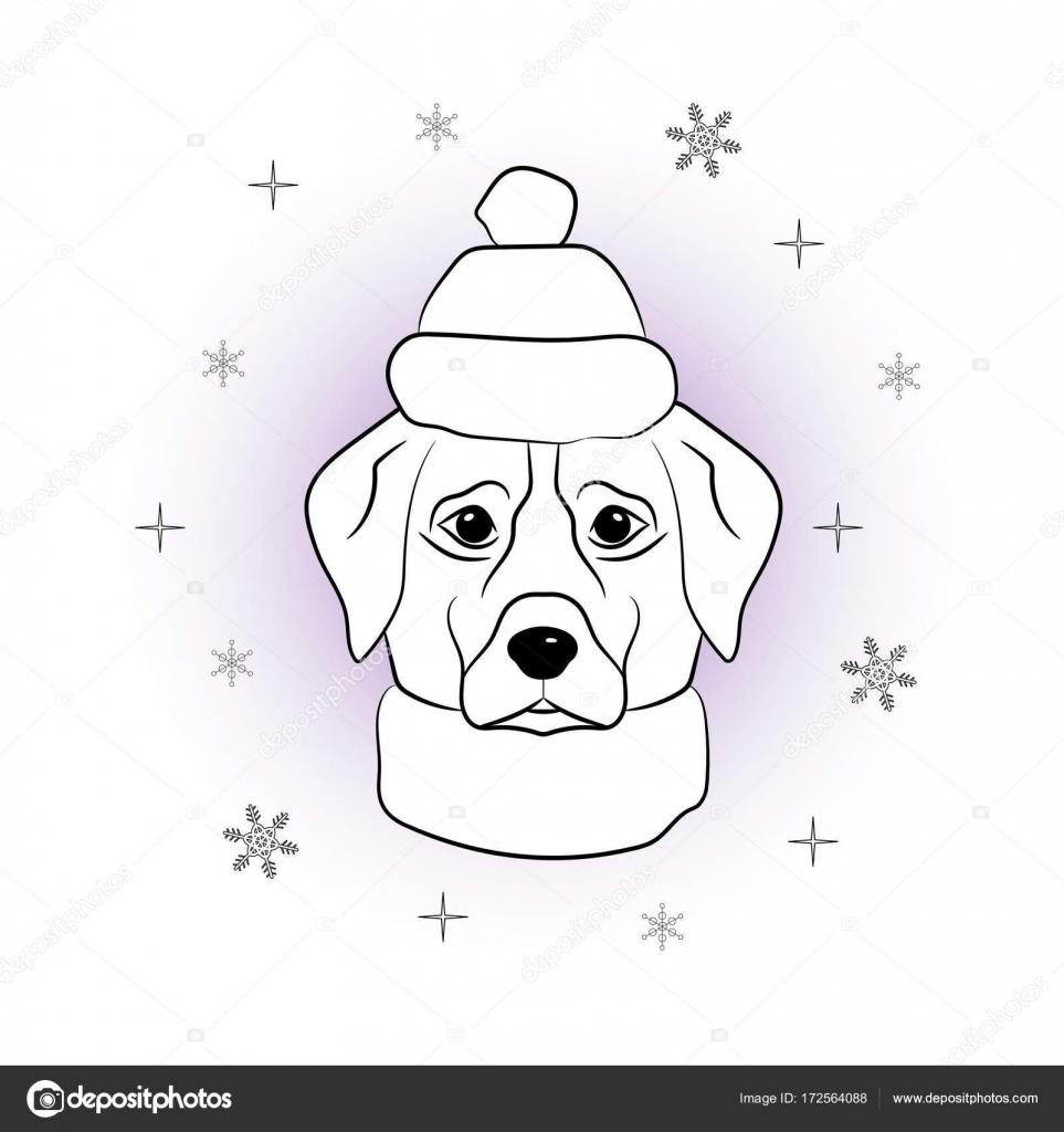 Kleurplaten Honden Labrador.Hoofd Van De Hond In De Winter Muts En Sjaal Op Sneeuwvlokken