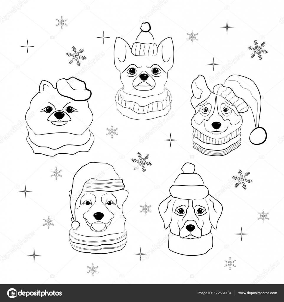 Kopf des Hundes im Wintermütze und Schal auf Schneeflocken ...