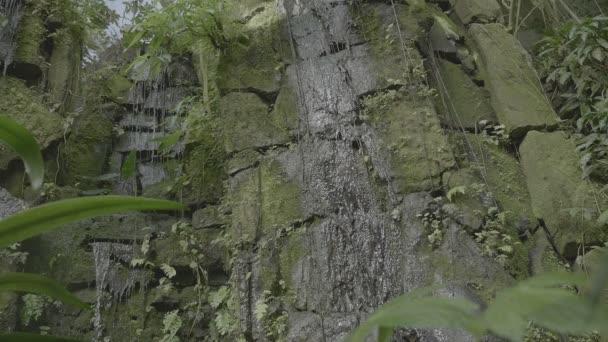 Tropická vodopád v tropických deštných pralesů. Pádu a tekoucí vodou na skále, kapky pádu do vody a kamenů