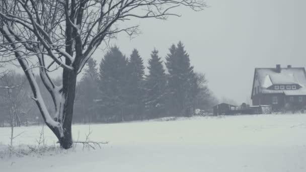 Zimní krajina s padajícím sněhem. Vše je pokryto čerstvého prášku. Intenzivní atmosféra jako severských detektivů. Zimní pozadí na vánoční téma. Statické den zastřelil