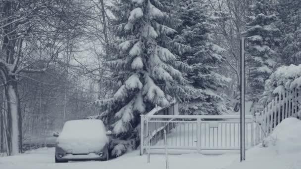 Zasněžená cesta s vozem. Zimní krajina s padajícím sněhem. Vše je pokryto čerstvého prášku. Intenzivní atmosféru velké stromy. Zimní pozadí na vánoční téma. Statické den zastřelil