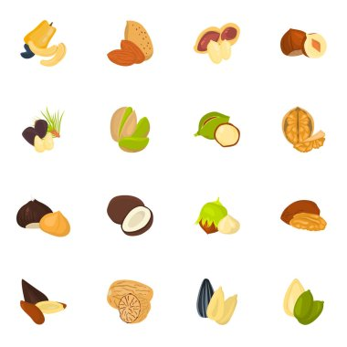 Set of color nuts icons in cartoon design
