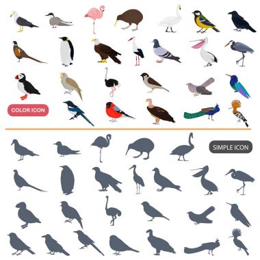 Color flat and simple birds icons set