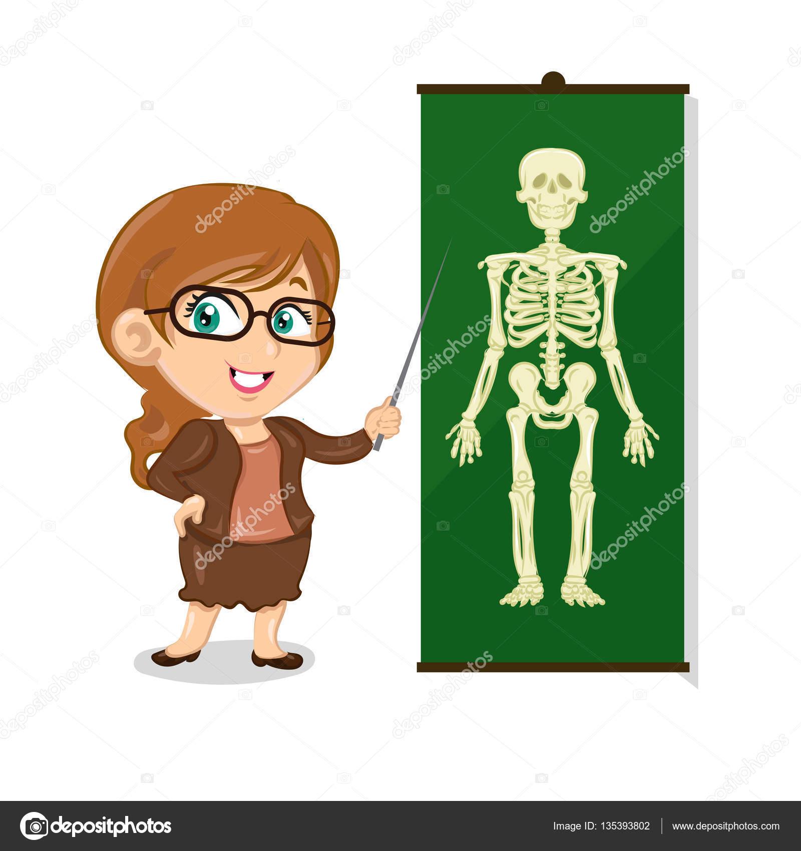 Profesor de anatomía con palo y esqueleto — Vector de stock ...