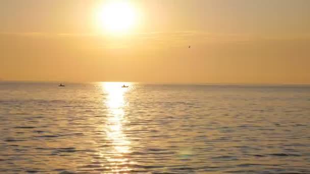 Východ slunce nad mořem kde ptáci létání a Shine odrážející na vlnách