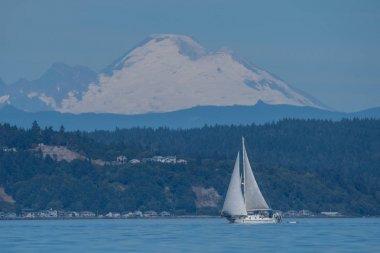 Sailboat in front of Mount Rainier