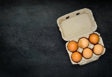Egg Carton with Fresh Chicken Eggs on Copy Space Area stock vector
