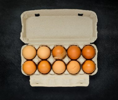 Organic and Fresh Chicken Eggs in Egg Carton Box on Dark Background stock vector