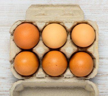 Organic Chicken Eggs in Egg Carton Box stock vector