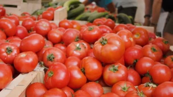 zralá rajčata na farmářský trh