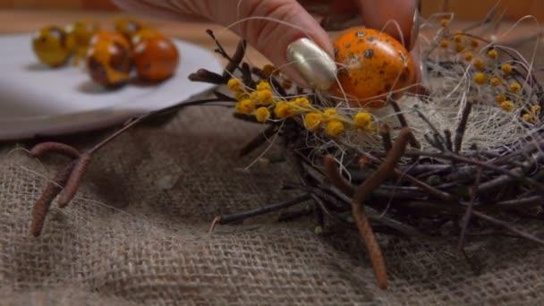 Žluté barevné křepelek, které jsou stanoveny vejce velikonoční hnízdo