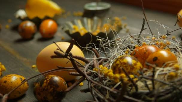 Panorama žluté barevné křepelek, které jsou stanoveny vejce velikonoční hnízdo