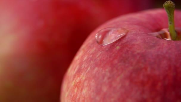 Kapka vody stéká velkým zralým červeným jablkem