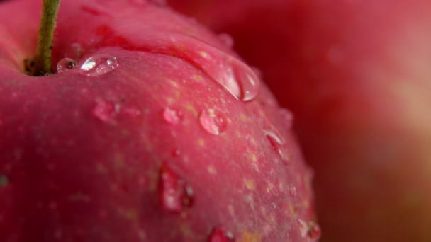 Super close up of a red apple with a water drop flowing down the surface