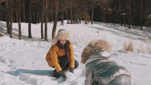 Rodina se bavit v slunný zimní den venku