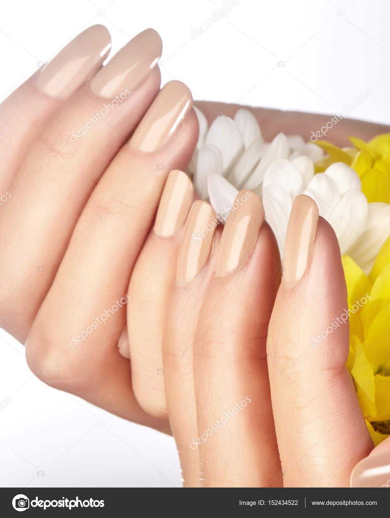 Gemanicuurde nagels met natuurlijke nagellak. Manicure met beige ...