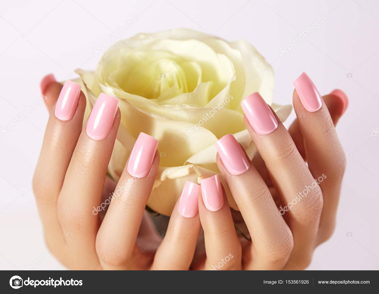 Gemanicuurde nagels met roze nagellak. Manicure met nailpolish. Mode ...