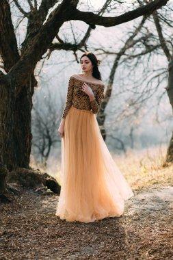 Beautiful  girl in a luxurious dress