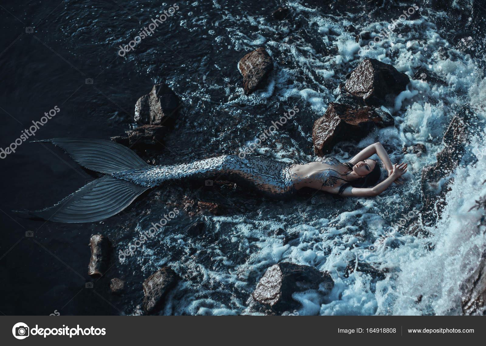 La Sirena Real — Foto De Stock